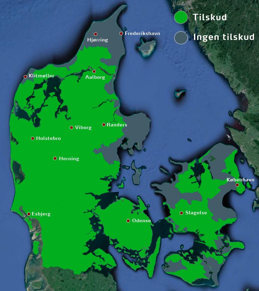 Skovrejsning Med Uden Tilskud Se Reglerne For 2020